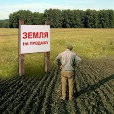 Пай земли как оформить